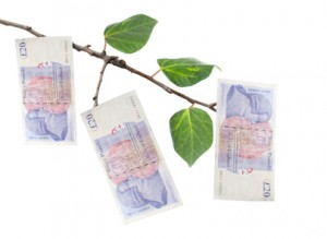 Money on Tree